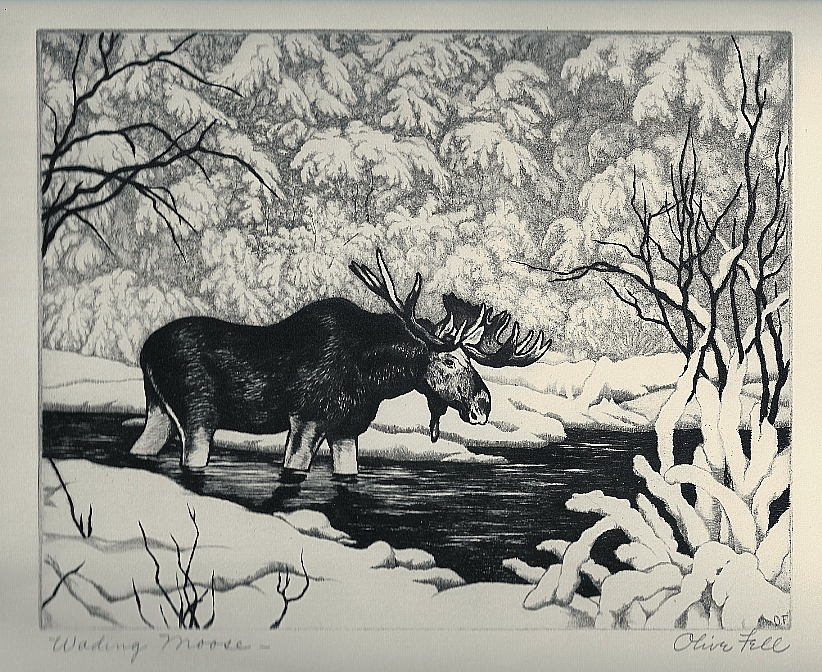 Wading Moose by Olive Fell