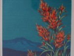 Olive Fell – Indian Paintbrush
