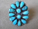 (sold) Zuni Cluster Ring