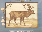 Bemis Bros. Calendar Lithograph &#8211; Caribou