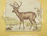 Bemis Bros. Calendar Lithograph – Mule Deer