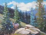 Don Crouch – Mule Deer, Snowy Range, Wyoming