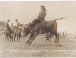 Mildred Douglas Riding a Steer – Real Photo Postcard