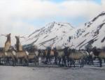 S.N. Leek – The Fighting Elk