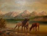 Leonard Lopp – Glacier Park Elk