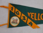 1934 Yellowstone Pennant