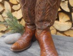 Early Alligator Cowgirl Boots